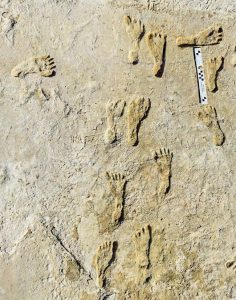 Cele mai vechi amprente lăsate de om in America de Nord