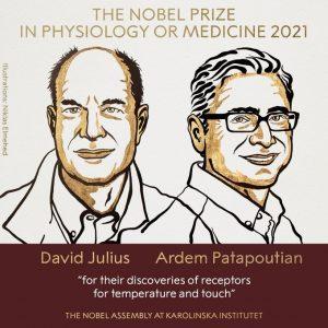 Premiul Nobel Medicina 2021